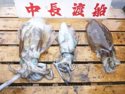 中長渡船の2018年11月18日(日)3枚目の写真