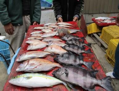 奥村釣船の2018年11月18日(日)3枚目の写真