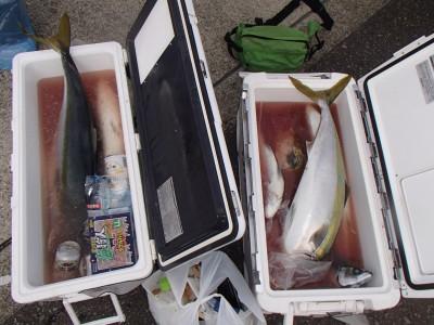 オーシャン串本の2018年11月21日(水)4枚目の写真