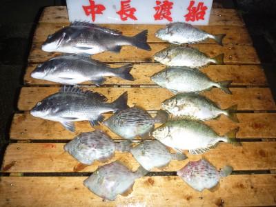 中長渡船の2018年11月21日(水)2枚目の写真