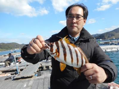 由良海つり公園&釣堀ランドの2018年11月23日(金)1枚目の写真
