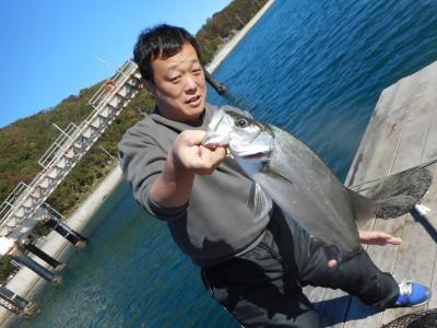 由良海つり公園&釣堀ランドの2018年11月24日(土)1枚目の写真