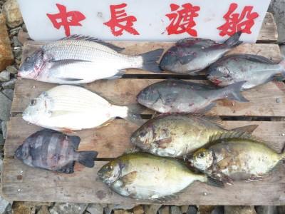 中長渡船の2018年11月26日(月)2枚目の写真