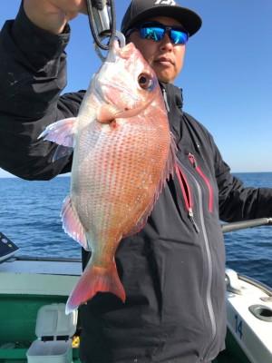 日正丸の2018年11月28日(水)3枚目の写真