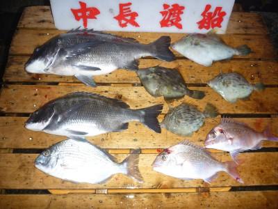 中長渡船の2018年11月29日(木)2枚目の写真