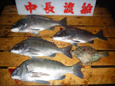 中長渡船の2018年11月30日(金)2枚目の写真