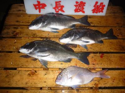 中長渡船の2018年11月30日(金)3枚目の写真