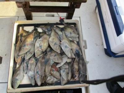 釣具の海友の2018年12月1日(土)2枚目の写真