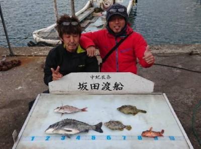 坂田渡船の2018年11月23日(金)2枚目の写真