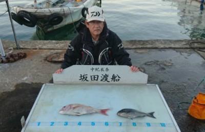 坂田渡船の2018年11月24日(土)3枚目の写真