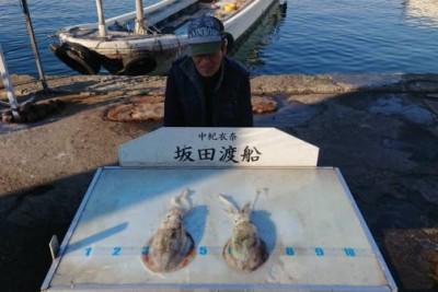 坂田渡船の2018年11月25日(日)1枚目の写真