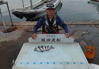 坂田渡船の2018年11月27日(火)3枚目の写真