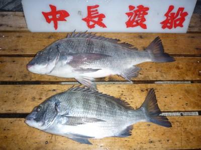 中長渡船の2018年12月15日(土)1枚目の写真