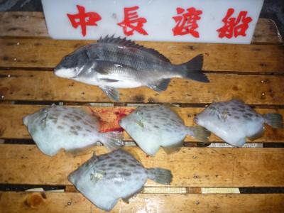 中長渡船の2018年12月15日(土)2枚目の写真