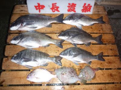 中長渡船の2018年12月19日(水)2枚目の写真