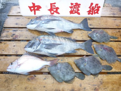 中長渡船の2018年12月19日(水)3枚目の写真