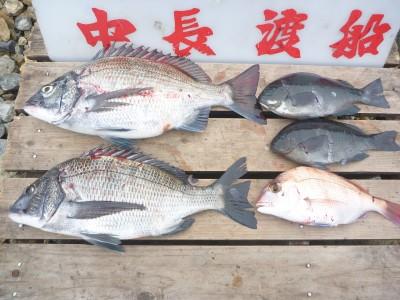 中長渡船の2018年12月20日(木)3枚目の写真