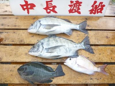 中長渡船の2018年12月23日(日)2枚目の写真