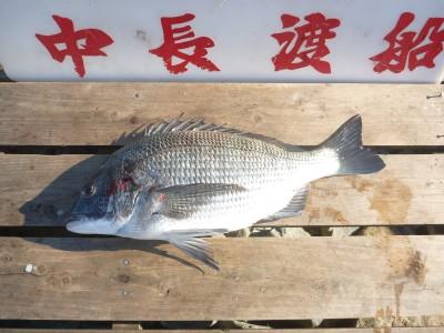 中長渡船の2018年12月25日(火)3枚目の写真