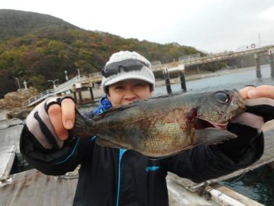 由良海つり公園&釣堀ランドの2018年12月26日(水)1枚目の写真