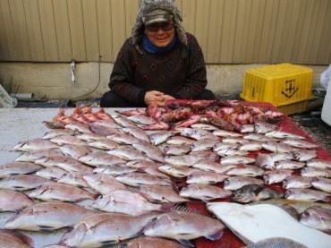 奥村釣船の2018年12月24日(月)2枚目の写真