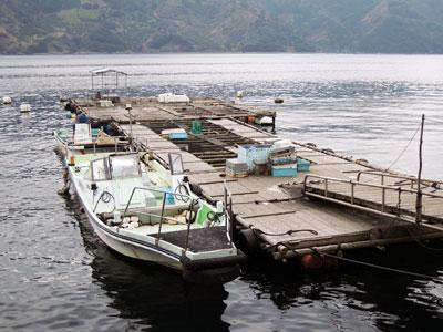 ヨシダマリンの船と店の写真
