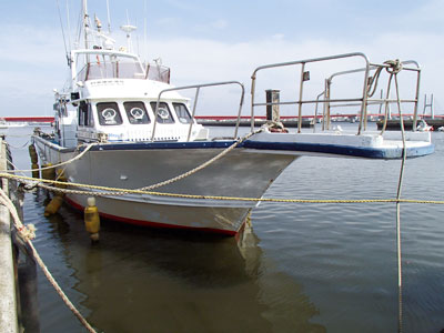 釣楽園 征海丸の船と店の写真