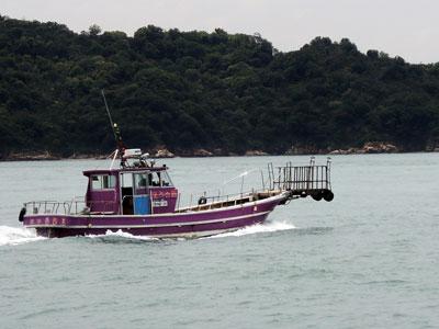 渡船 たい公望の船と店の写真
