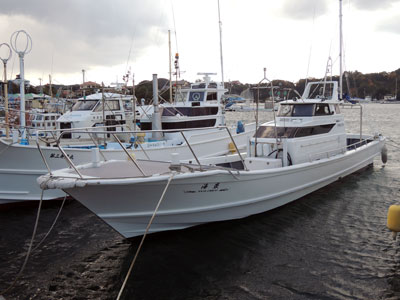 SOUTH CURRENTの船と店の写真