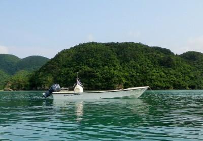 リトルターンの船と店の写真