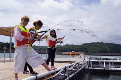 阿久根シーパークの船と店の写真