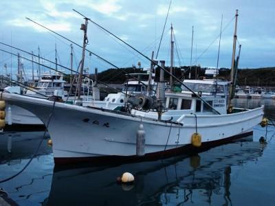 康仁丸の船と店の写真